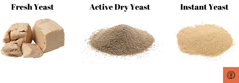 The three types of yeast | fresh yeast, active dry yeast, and instant yeast