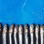 Anchovies: How Long Do They Last?